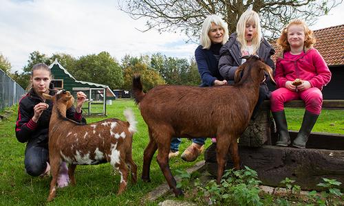 Kinderboerderij Het Hertenkamp wint 10.000 euro